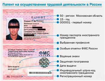 Проверка штрафов только по водительскому удостоверению